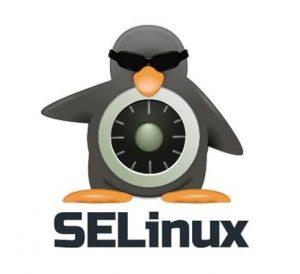 什么是SELinux